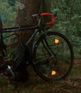 fahrrad_unmodifiziert