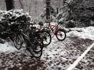 fahrradstaender_im_winter