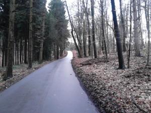Hedwigweg zur Königshöhe