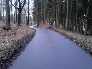 Asphalt im Wald