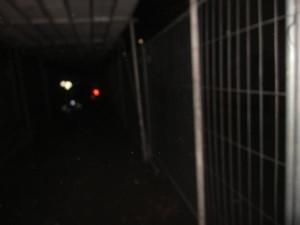 im_dorper_tunnel