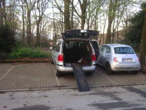 Auto mit Hundeeinstiegshilfe am offenen Kofferraum