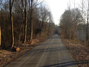Morgens ist die Nordbahntrasse leer