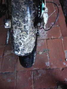 Salzkruste auf Fahrradchutzblech