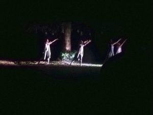 Unter einer Fichte tanzende Menschen