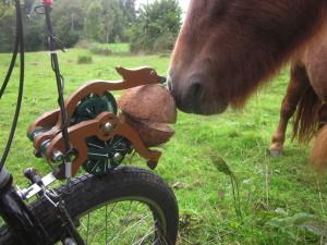 Trotify an meinem mini-speedbike mit Shetland-Pony